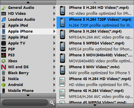 AVCHD MTS/M2TS to iPad/iPhone Conversion