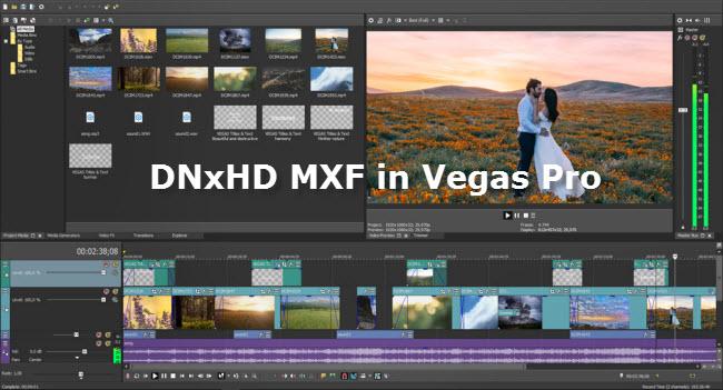 DNxHD mxf in Vegas Pro